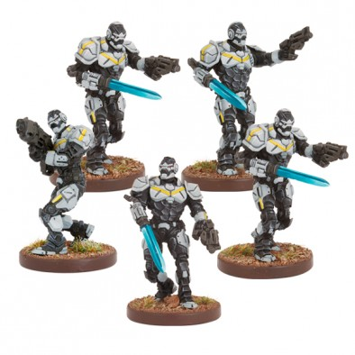 Enforcer Assault Team