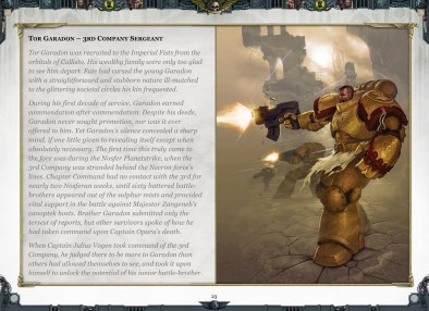 Sentinels Of Terra Codex Fluff