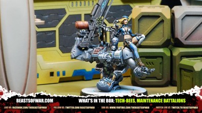 What's in the Box: Tech-Bees, Maintenance Battalions