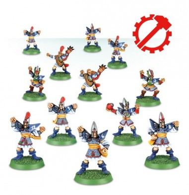 High Elf Blood Bowl Team