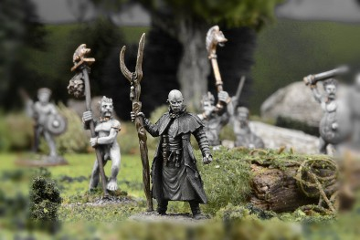 Show Exclusive Druid #1 - Wargames Illustrated