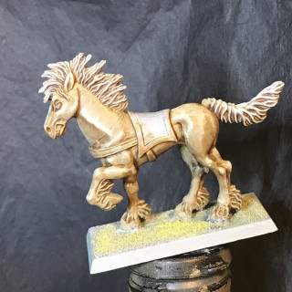 The next Horse