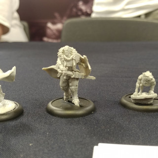Liontower Miniatures Roar For Their Shortlisted RPG Minis [PRIZE]