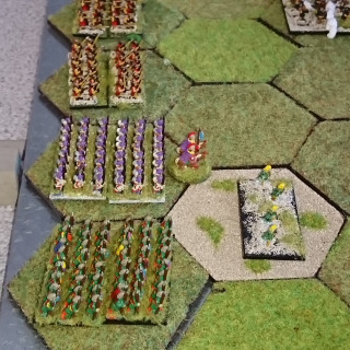 Command & Colors Ancients - Wyre Forest Wargamers