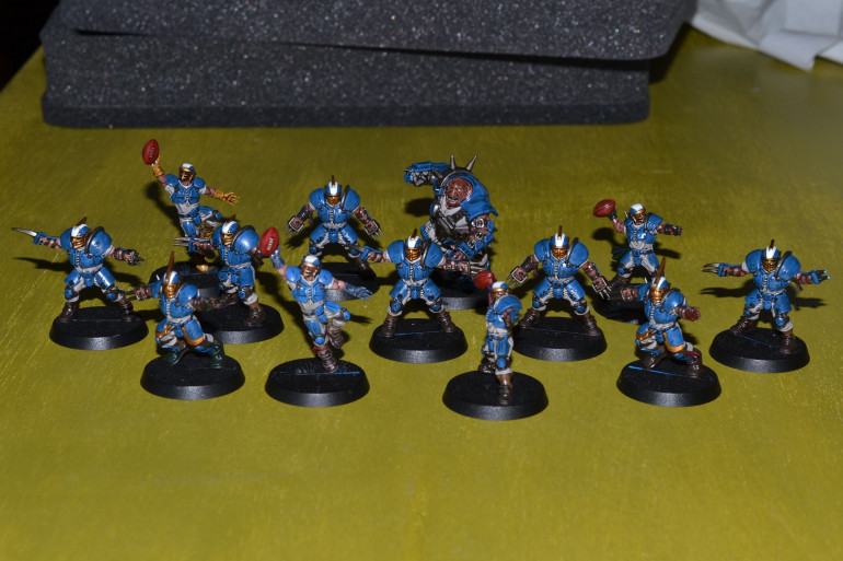 Reikland Reavers washed and some of the highlight done.