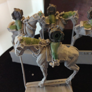 100th Drookian Fen Riders