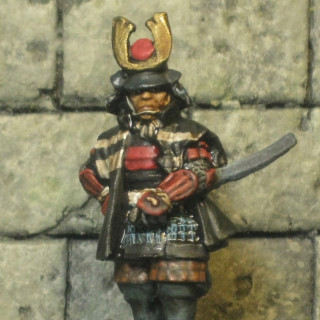 Takeda's second general for the command section is finished.