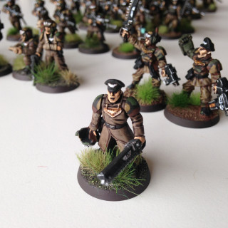 Cadian 180th Stalking Tigers