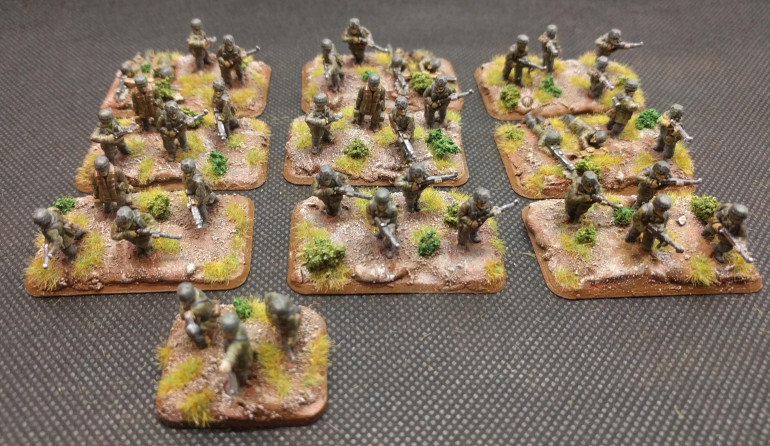 A full Infantry Platoon