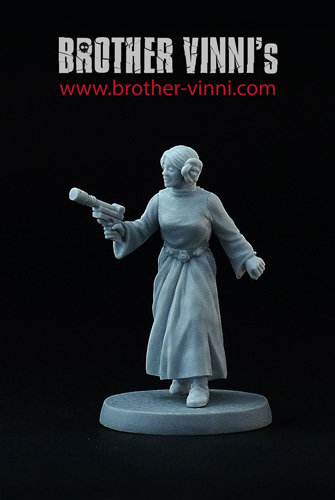 Armed Princess - Brother Vinni