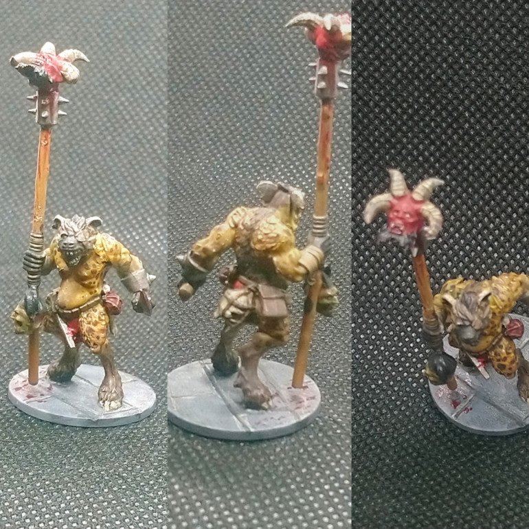 Gnoll Shaman (GW Beastman and NorthStar mix)