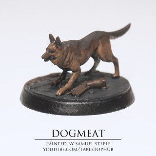 Dogmeat Photo Gallery