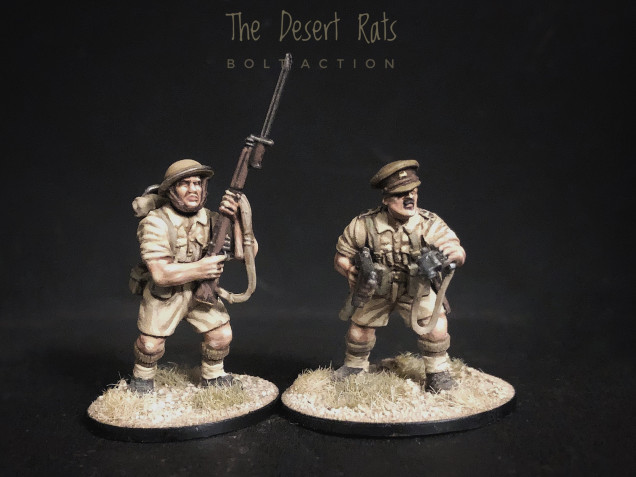 A Dashing Officer for the Desert Rats
