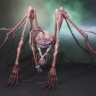 Spidicules