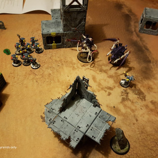 My First Battle: Tyranids Vs Space Wolvas At About 500 Points