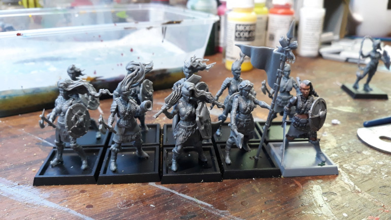 A unit of 10 Shield Maidens from Shiledwolf Miniatures