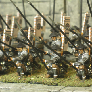 Finished 40 Ashigaru with yari finally.