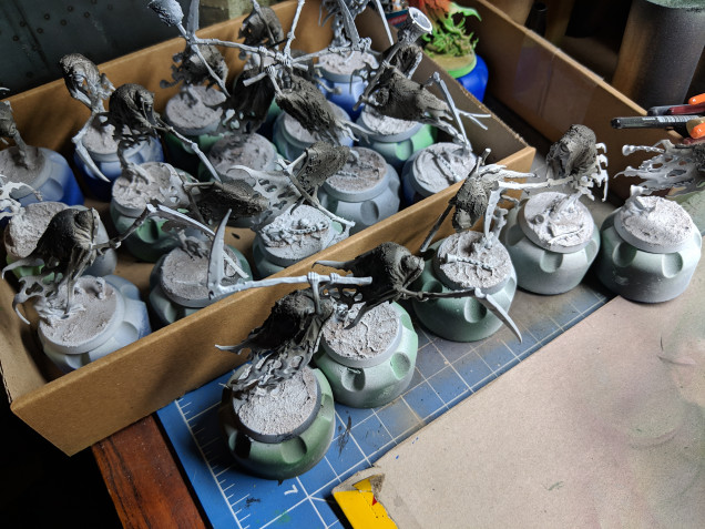 Priming white and the cloaks reverse zenathol highlighting with dark gray