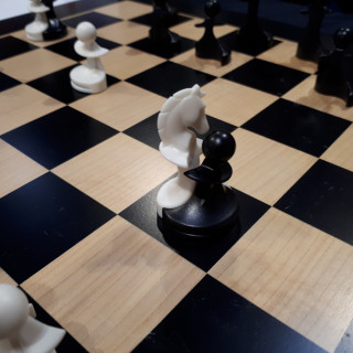 Paco Ŝako Embrace The World Of Peace Chess