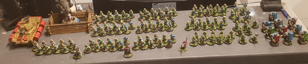 Spring Cleaning Challenge: Imperial Guard (PROJECT COMPLETE!)