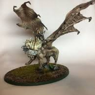 Winged menagerie: reference images