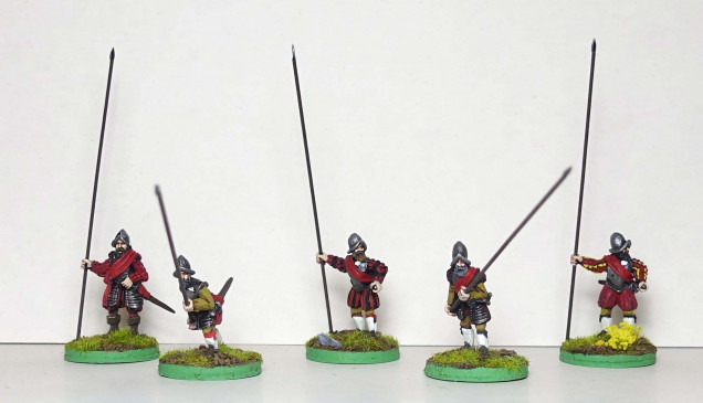 Spanish armoured pikemen