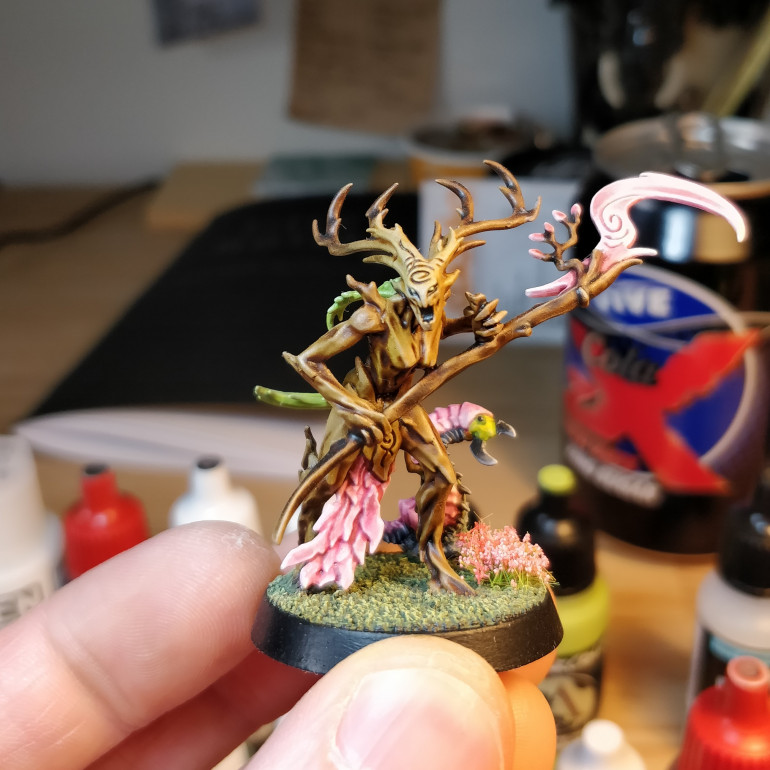 A Branchwych I picked up cheap, to test my paint scheme ideas on.  It worked out pretty well, with some minor tweaks