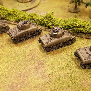 Bob's Christens His Shermans