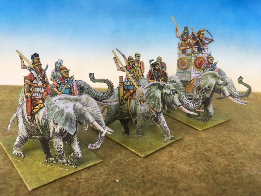 Carthaginian African Elephants - Peters Paperboys