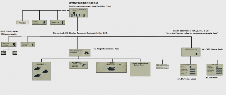 organization of the battle group
