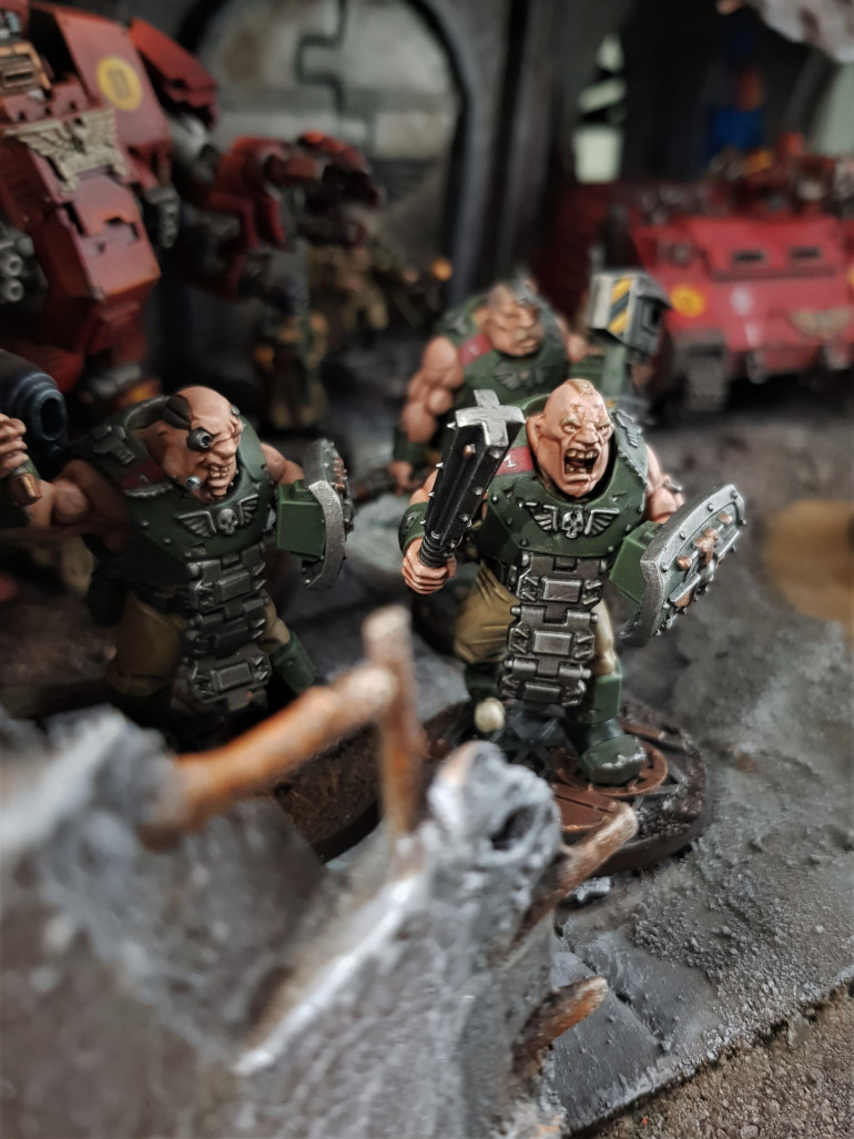 Bullgryns in action