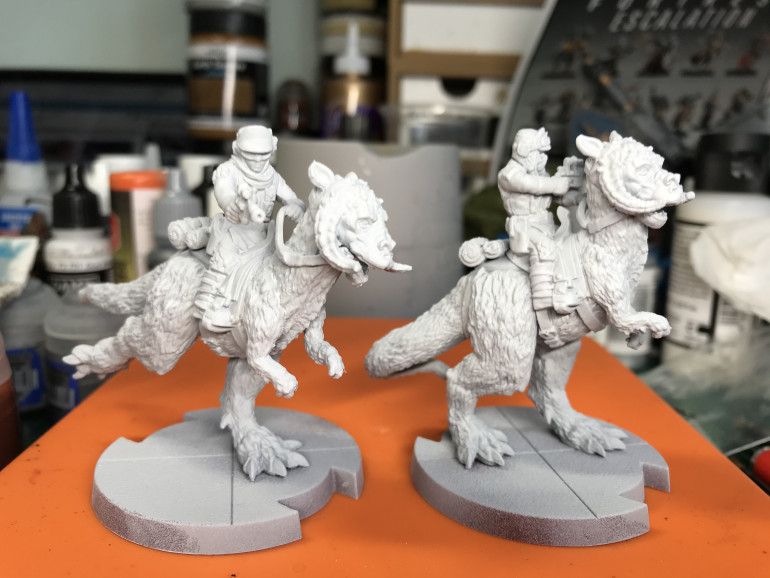 Primed with Grey Seer and zenithed white