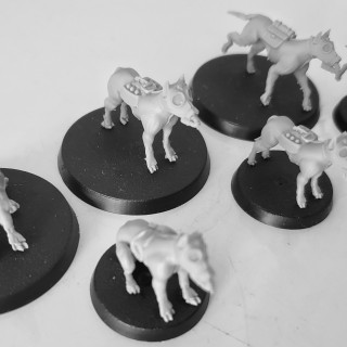 Reprinting the dogs