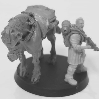 Proof of Concept: Drookian Dragoons