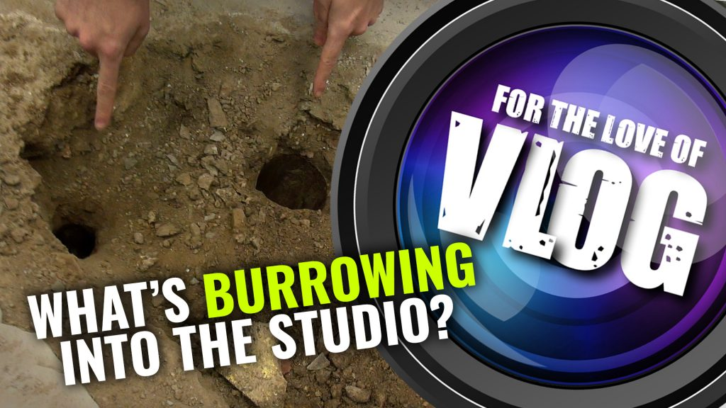 VLOG: What's Burrowing Into The Studio?