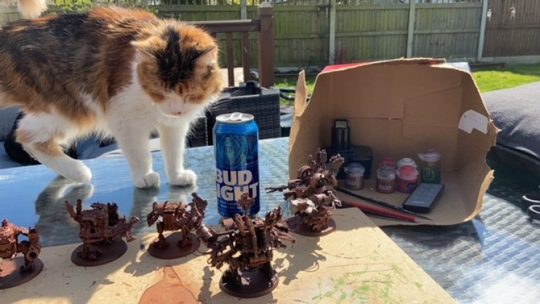 Another essential item to any project apart from cold beer is a helper Cat. Here Bay can be seen scrutinising the base coated models checking for missed areas.