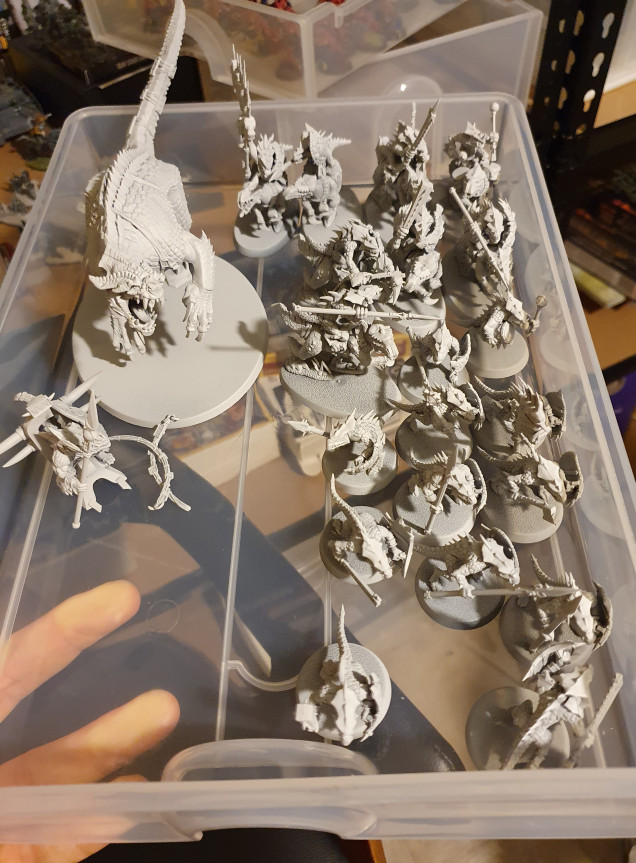 Seeing as my initial army box is nearly finished I also got around to assembling the Start Collecting Seraphon box I'd bought myself and got it all primed in Grey Seer