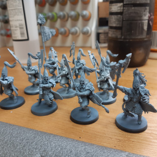 Back to Warhammer and The White Lions of Chrace