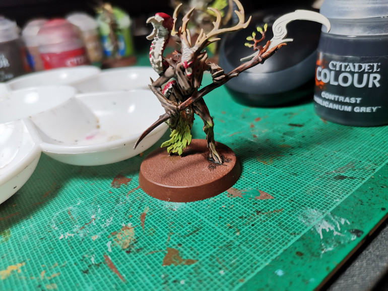 Now to concentrate on the branch whych. Paint these like the dryads before; then prep the underside of the bug critter, the scythe blade, the eyes, mouth and fore head swirl with Wraithbone for more contrast paint.