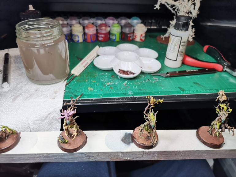 I'd recommend at this point varnishing your miniatures, I sprayed mine with a Satin Varnish. The reason for this is that I find the contrast paint rubs off easily and this is especially true for the Sylvaneth as there are a lot of pointy bits and fragile bits. I've already broken a few creatures, I found half of a worm one week later and super glued it back on, then I found the other night another bit that is primed and not painted on the carpet so I don't know where it fell off. Anyway be careful with these minis I need to plan storage, magnets may be the way to go.