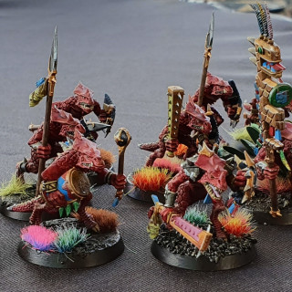 Finished Saurus Warriors