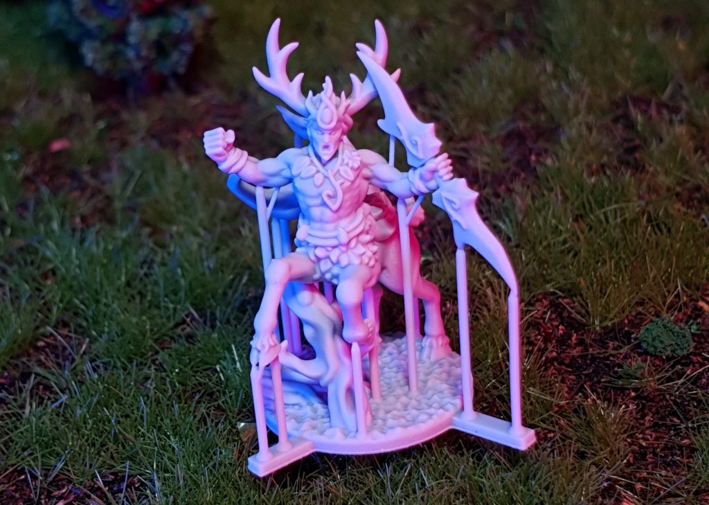 Forest King - Printing In Detail.jpg