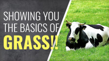 Gerry Can Show You How To Grow Grass!