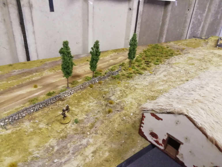 First three trees to go in the board. They look ok but could be with being bigger but all wargaming trees are to small compared with reality.