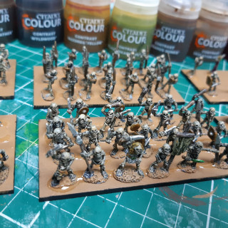 skelly's ready for basing