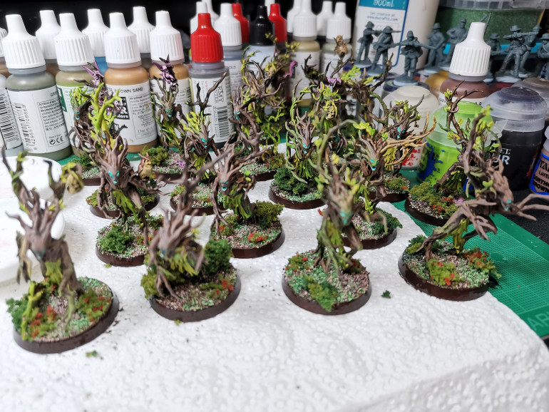 Taaking a break from painting confederates I started my second Sylvaneth Starter box.
