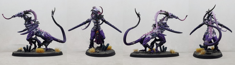 Unit leader of Fiends of Slaanesh, seen from all sides