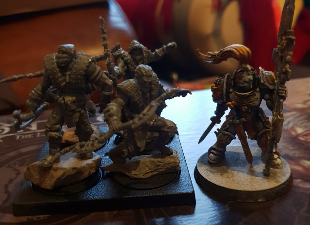 Standard reference Custodes for scale