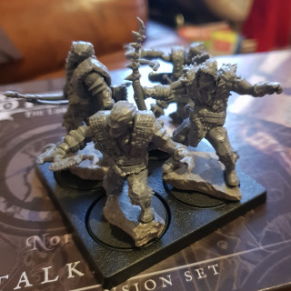 Stalkers and custodes oh my!
