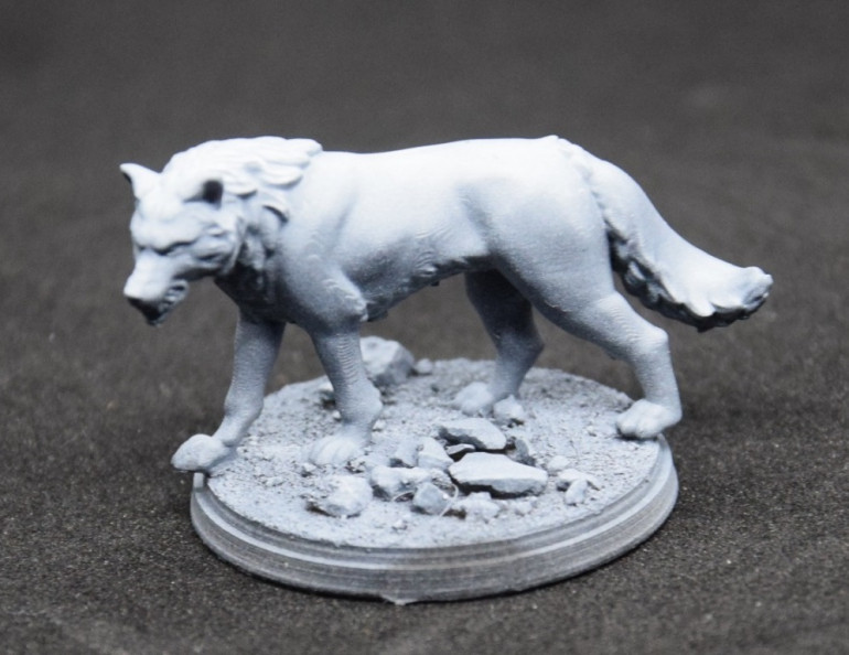 I primed the miniature in black and added a zenithal highlight of pure white.